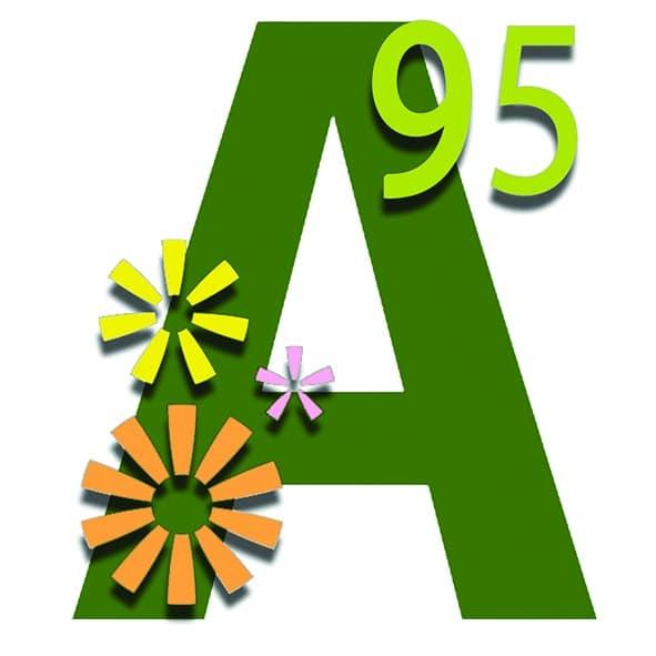 APAJH 95